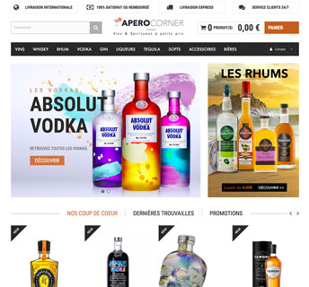 Vente de site dropshipping vin
