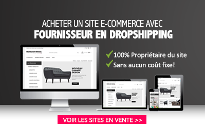 Site dropshipping en vente