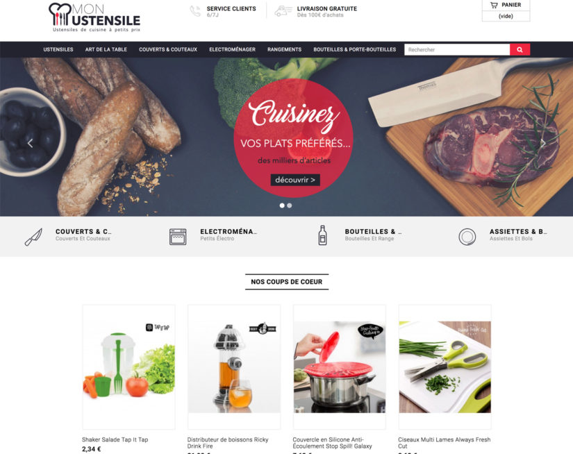 Vente site e commerce dropshipping cuisine